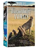 Nature: Extraordinary Animals [DVD] [Import]