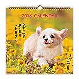 日本ホールマーク 明日への一歩犬 2018年 カレンダー 壁掛け 大 726249