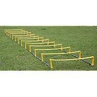 俊敏性 スポーツ 練習 サッカー 陸上 筋トレ 練習内容に合わせて変形できる 俊敏性を高めるトレーニングラダー