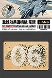 リアンモデル エアブラシ用ソルトウェザリングステンシル小 1/32・1/48・1/72 ミニチュア用ツール LIANG-0006