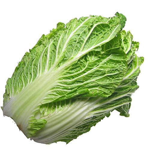 【白菜4玉】 低農薬栽培