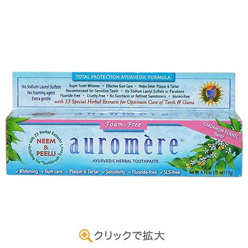 あなたのもの早くめまい2個セット オーロメア アーユルヴェーダ ハーバル歯磨き粉 フォームフリー 117g[海外直送品]