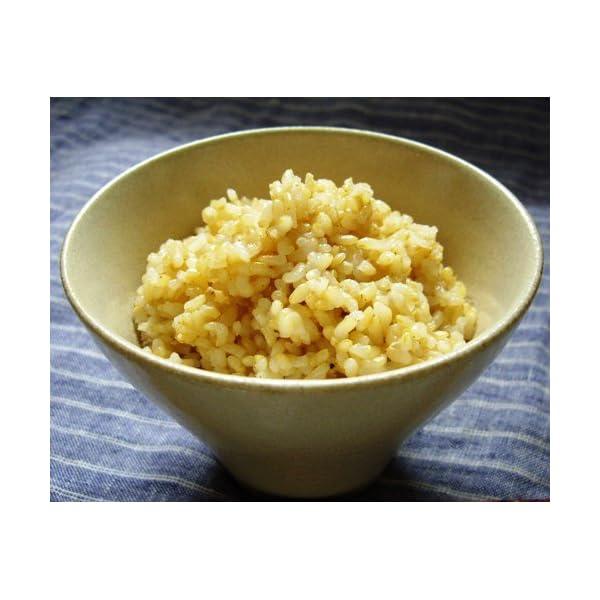 越後製菓 玄米ごはん 150g×12個の紹介画像2