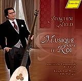 王のための音楽 - バロック期のフランスのリュート音楽 (Musique Pour Le Roi - French Lute Music of the Baroque / Joachim Held)
