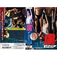 Amazon.co.jp: 加藤陵子: DVD