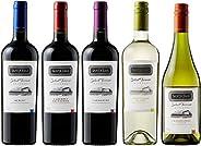 金賞受賞入り! 世界で高評価&メダル受賞ワイナリーのチリ赤&白ワイン至極の飲み比べ5本セット(赤750mlx3、白750mlx2) [チリ/Amazon.co.jp限定/Winery