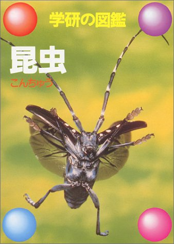 昆虫 (学研の図鑑)