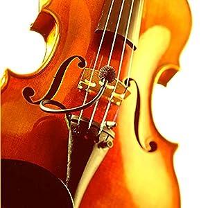 SD SYSTEMS Microphone LCM110HLV for Strings(エスディーシステムズ マイクロフォン LCM110 バイオリン等の弦楽器向け)