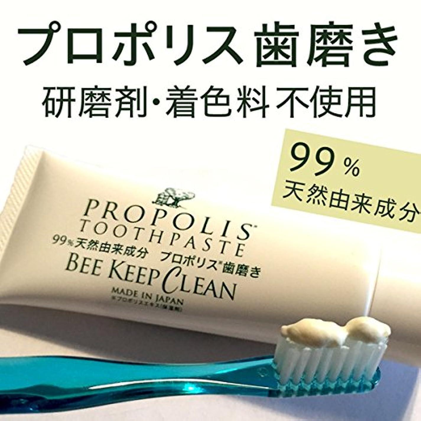 オペレーター薄暗いスロットプロポリス歯磨きビーキープクリーン100g