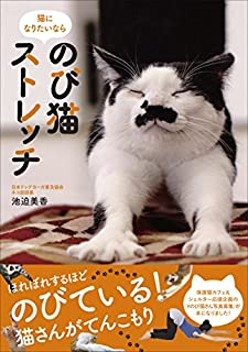 のび猫ストレッチ 猫になりたいなら