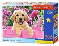 """Castorland """"labrador Puppy In Pink Box"""" Jigsaw Premium Puzzle (300-piece,"""