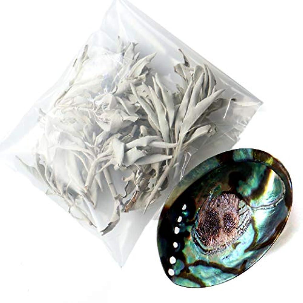悲惨な樹皮書誌ホワイトセージ 枝付き 30g前後 アバロンシェル 浄化皿 セット