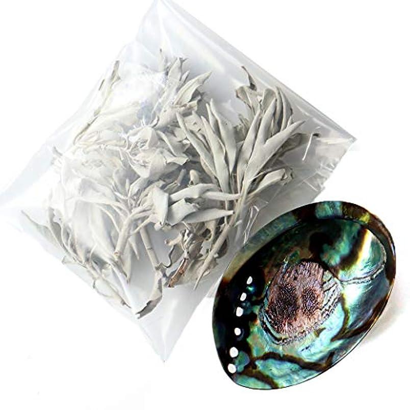 数学者ビーチ髄ホワイトセージ 枝付き 30g前後 アバロンシェル 浄化皿 セット