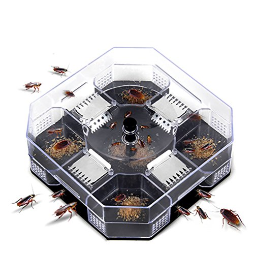 Hayder ゴキブリ 捕獲器 害虫 捕獲 対策 退治 飼育 生け捕り式 トラップ...