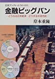 金融ビッグバン―どうなる日本経済どうする中流市民 (岩波ブックレット (No.453))