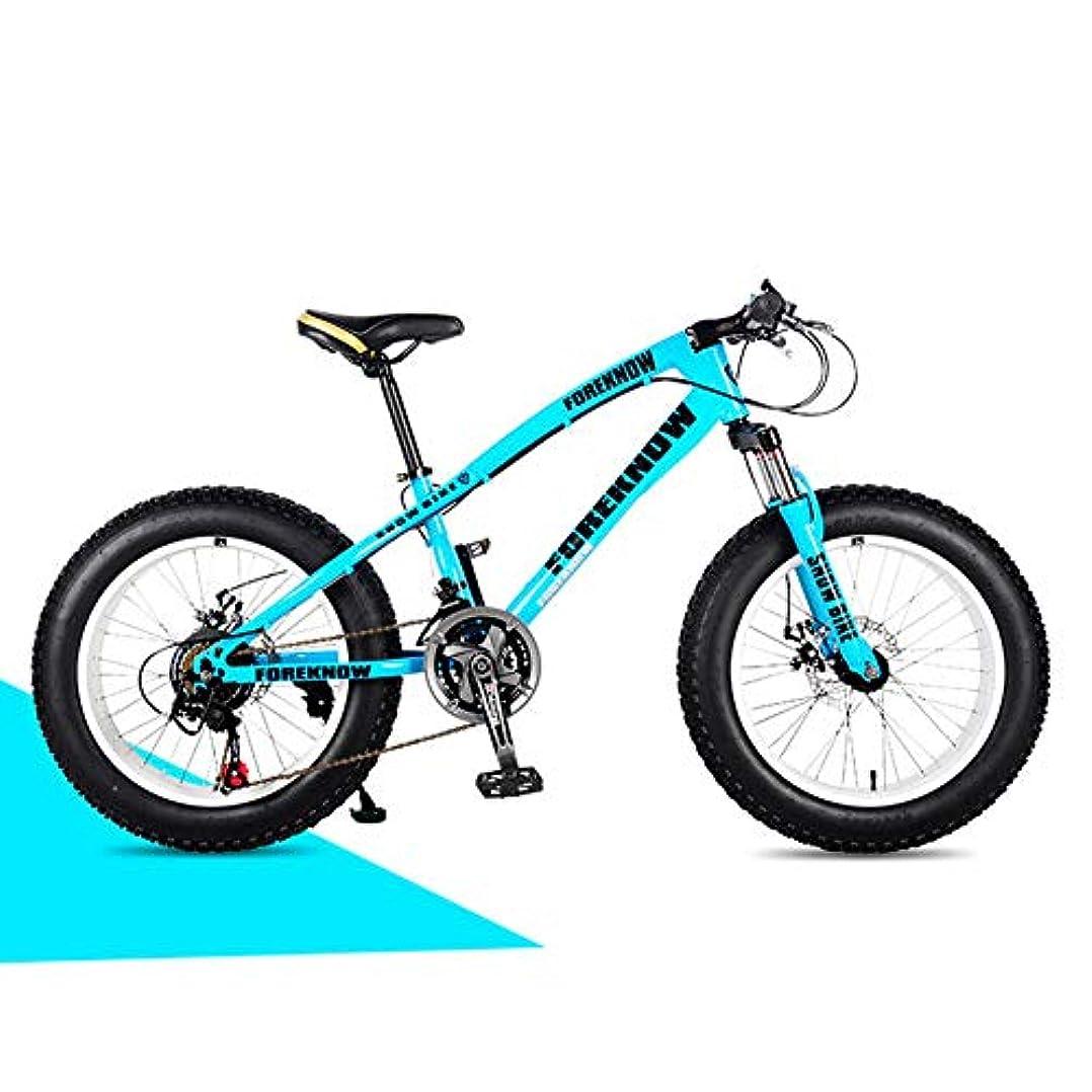 啓発する人類毎月オフロード、マウンテンバイク、アルミフレーム、スノービーチ4.0、特大自転車用タイヤ、男性用および女性用オフロード車