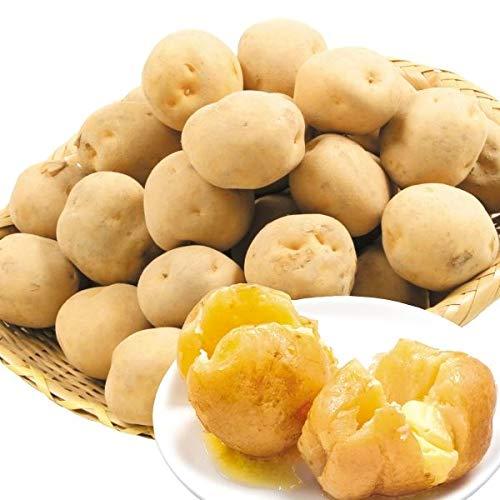 国華園 北海道産 キタアカリ 20kg1組 じゃがいも ジャガイモ