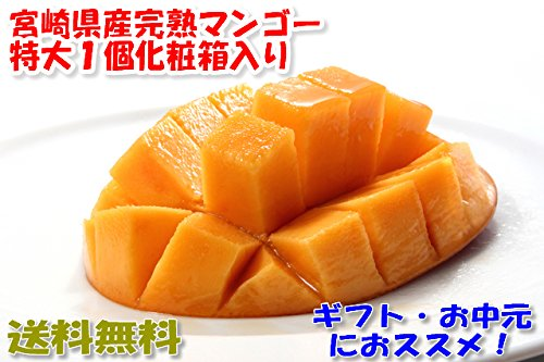 宮崎マンゴー 贈答向け 3L大玉1玉化粧箱入
