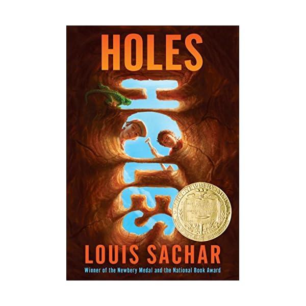 Holes (Holes Series)の商品画像