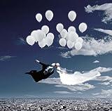 風船夫婦の俯瞰show(Mr.& Mrs. Balloon feat.GEROCK/俯瞰show)