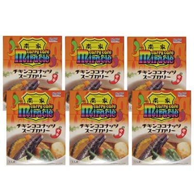 北海道南家チキンココナッツカレー[300g×6個]【送料込】