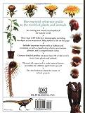 DK Nature Encyclopedia 画像
