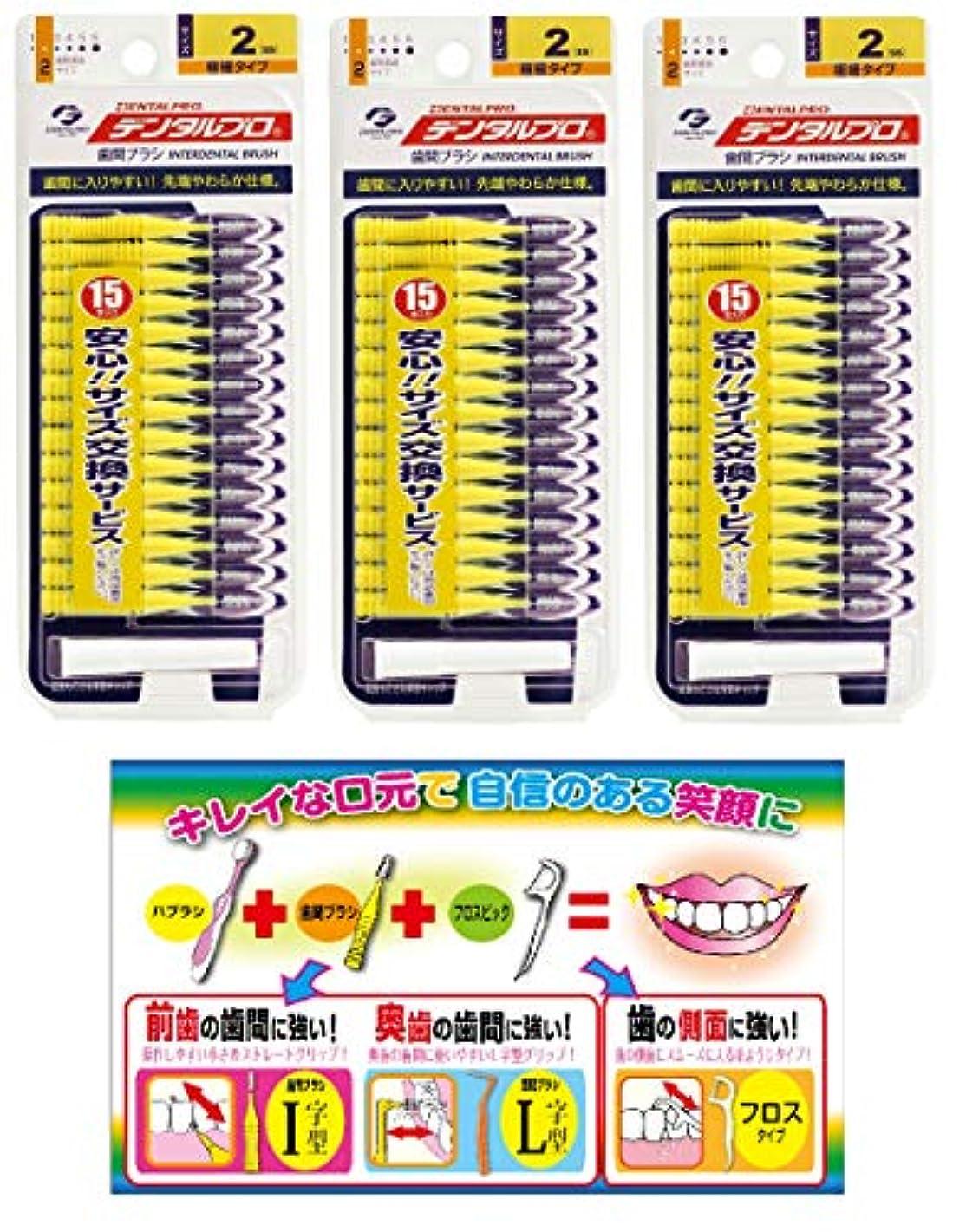 器具アジアキャンバス【Amazon.co.jp限定】DP歯間ブラシ15P サイズ2 3P+リーフレット