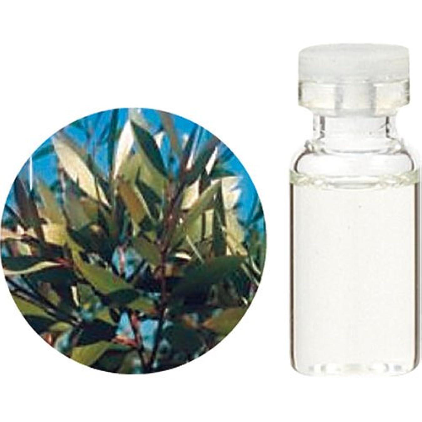 油生命体ジョイント生活の木 Cニアウリ シネオール エッセンシャルオイル 3ml