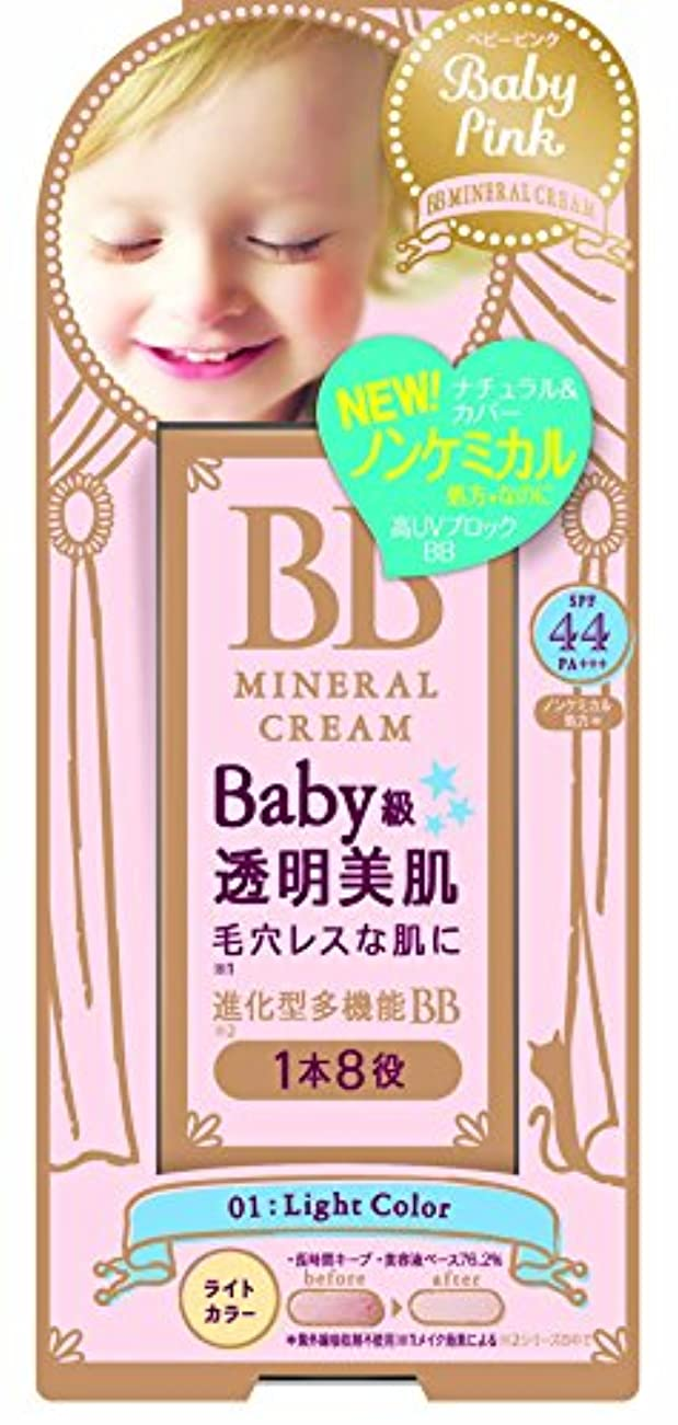 宴会肉屋比較ベビーピンク BBクリーム 01:ライトカラー 20g