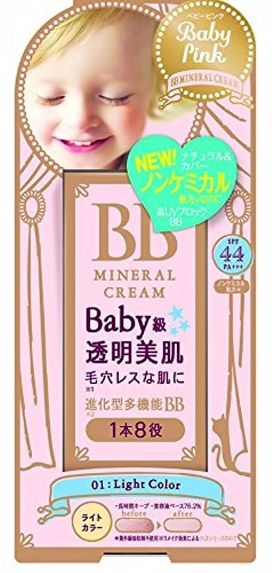 経済的扇動するスモッグベビーピンク BBクリーム 01:ライトカラー 20g