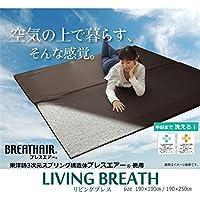 ブレスエアー 東洋紡 BREATHAIR 洗える マット ラグ カーペット 2畳 『リビングブレス』 約190×190cm