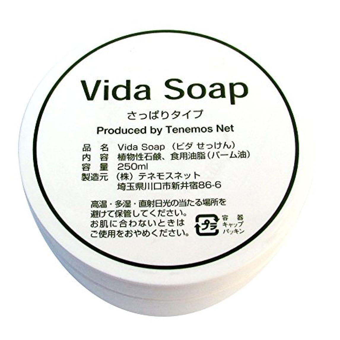 半導体練る意識的テネモス ビダせっけん Vida Soap さっぱりノーマル 植物性 250ml