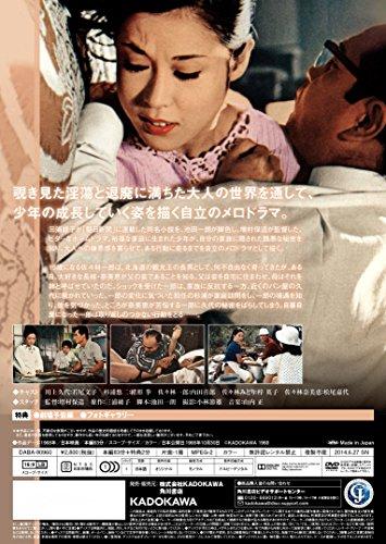 積木の箱 [DVD]