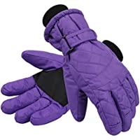 Livingston Women's Thinsulate Lining Sports Waterproof Ski/Snowboarding Gloves