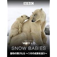動物の親子たち~1年の成長を追う~ (吹替版)
