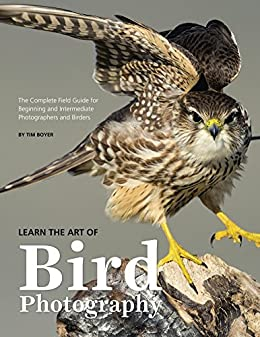 Learn the Art of Bird Photography: The Complete Field Guide for Beginning and Intermediate Photographers and Birders by [Boyer, Tim]