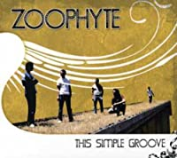 THIS SIMPLE GROOVE  [Import]