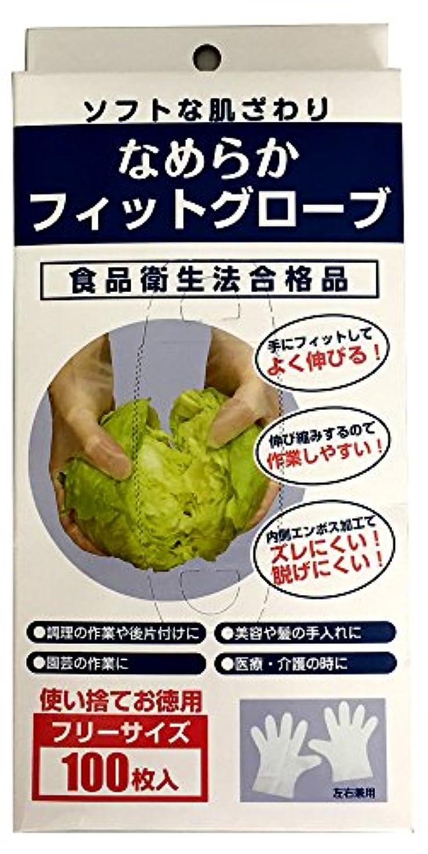 望む終わり介入する調理用ビニール手袋 なめらかフィットグローブ 半透明?左右兼用 100枚入 KPC-701