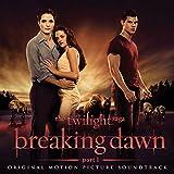 Twilight Saga: Breaking Dawn Part 1 画像