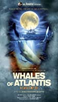 Whales of Atlantis: In Search of [Blu-ray] [Import]