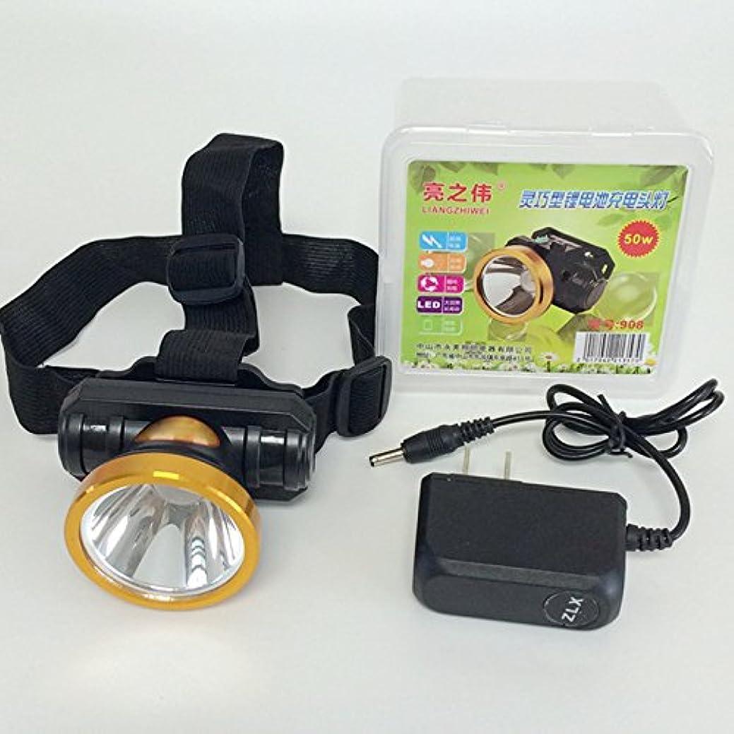 すばらしいです瞳再発するRaiFu ヘッドライト 50W ヘッドランプ 強力な電源 充電式 懐中電灯 ハンティング ヘッドライト