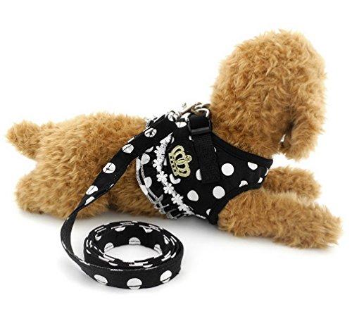 Ranphy 超小型犬 小型犬 猫 胴輪 ハーネス リード セット 通気性 可愛い ドット柄 クラウン フラウンス付き (ブラック,S)
