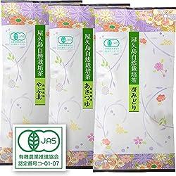 51Tg53YfghL. SL250  - 屋久島自然栽培茶「やぶ北」「冴えみどり」「あさつゆ」&浅蒸し煎茶