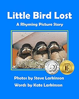 Little Bird Lost: A Rhyming Picture Story by [Larkinson, Steve, Larkinson, Kate]