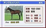 「ダービースタリオンGOLD (Derby Stallion GOLD)」の関連画像