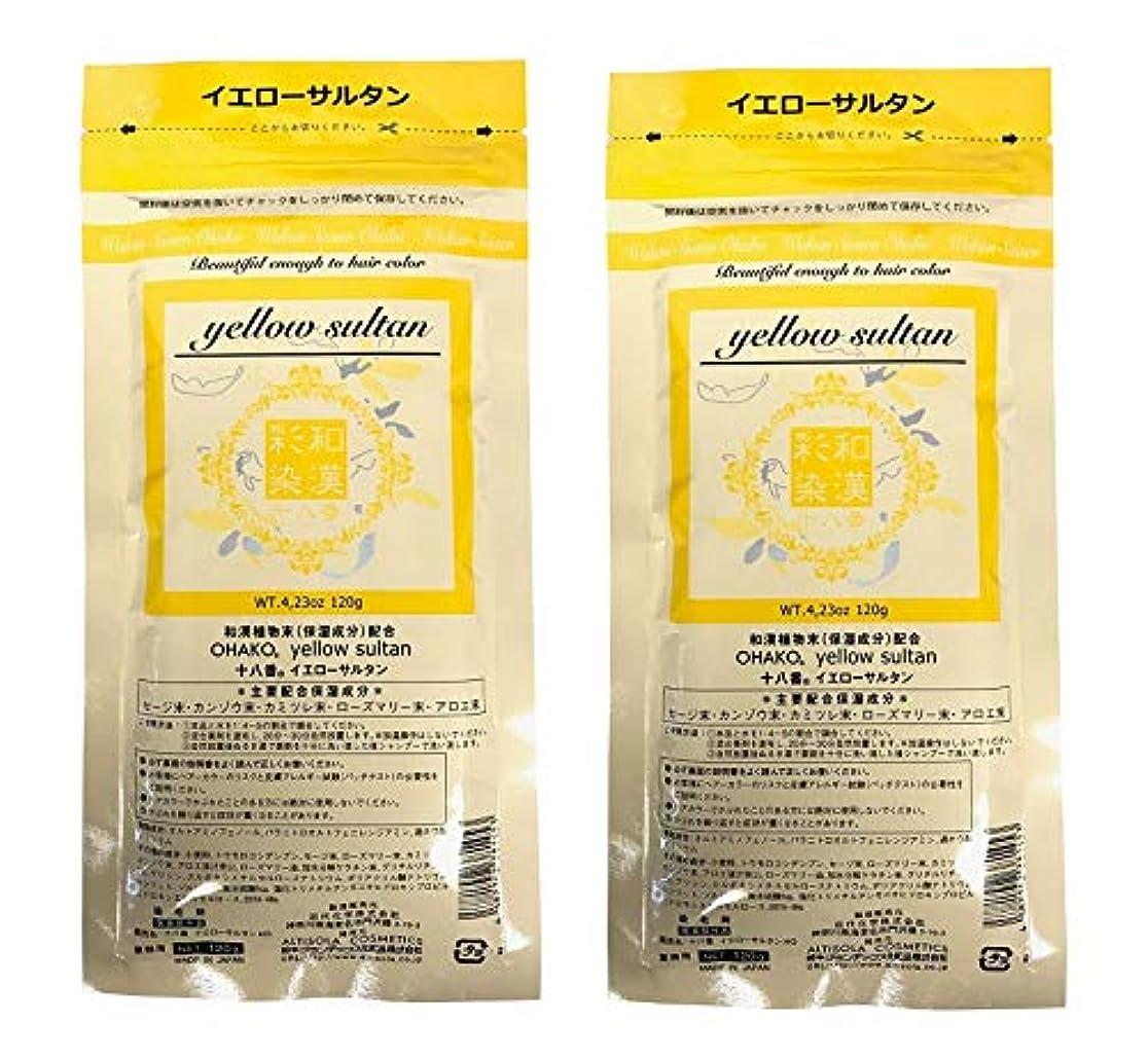 夕食を食べる規範ヘロイン【2個セット】グランデックス 和漢彩染 十八番 120g イエローサルタン