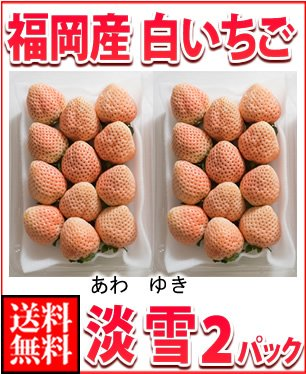 福岡産・白いちご 淡雪(あわゆき) 2パック