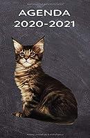 AGENDA 2020 - 2021: Agenda Hebdomadaire  - 1 semaine par page - Format A5 - Jan 2020 à Dec 2021 - planificateur, semainier simple & graphique   Pour les amoureux des Chats