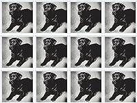 Milasアート犬–Labrador Retriever–グリーティングカード Set of 12 Greeting Cards
