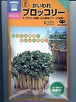 かいわれブロッコリー 中原採種場のスプラウト用のブロッコリー種です